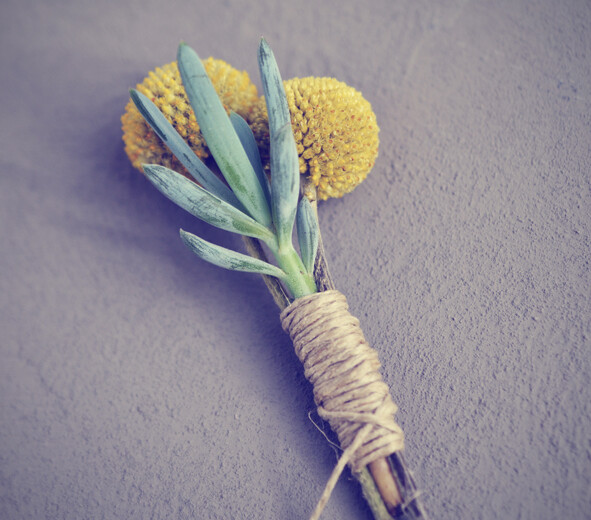 Wedding boutonnière – succulent and craspedia