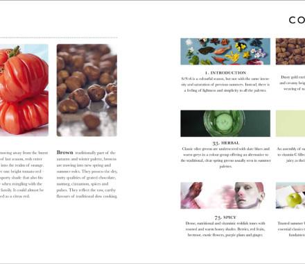 Intro Colourplanner 34