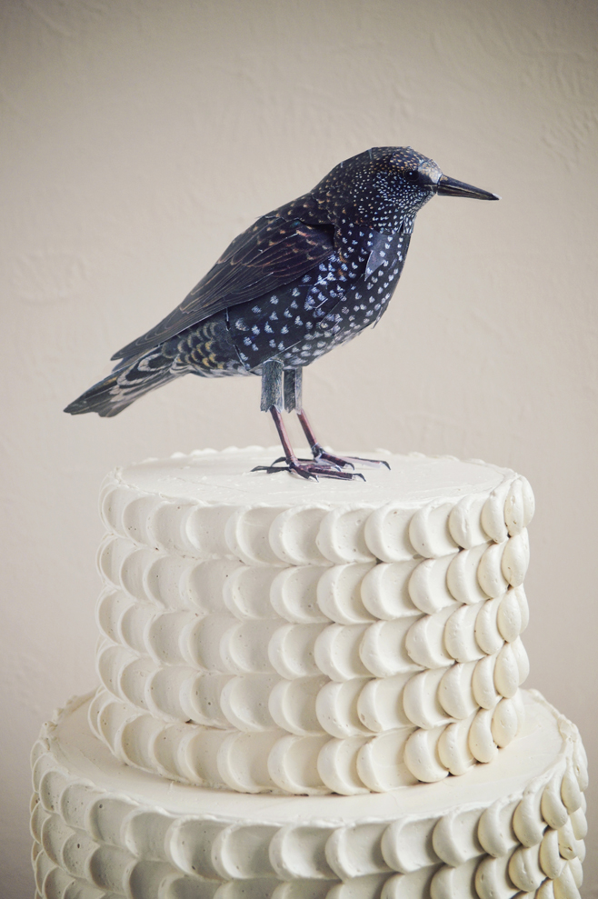 Feathercake with bird