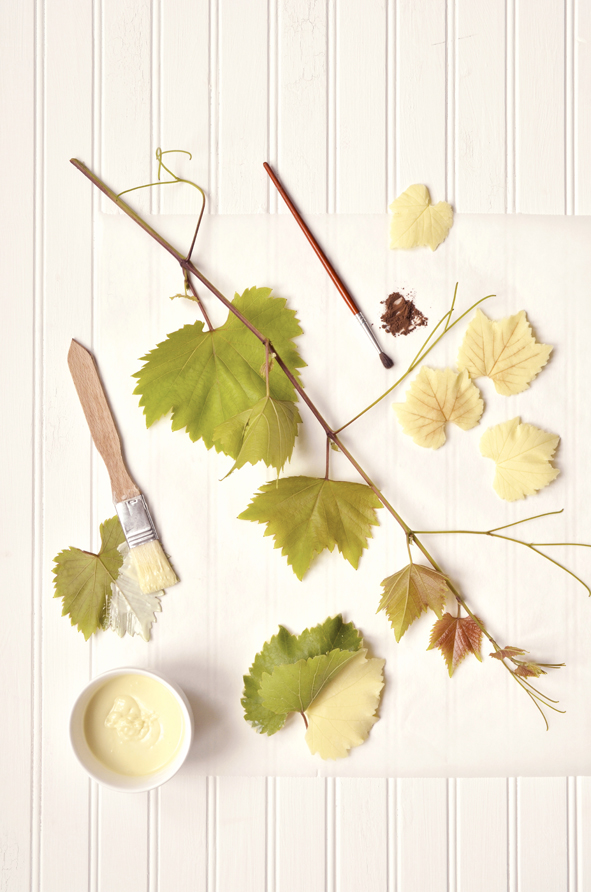 White chocolate grape leaves