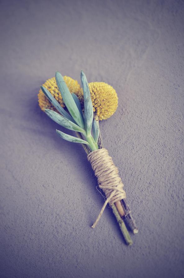 Wedding boutonnière – succulent and craspedia
