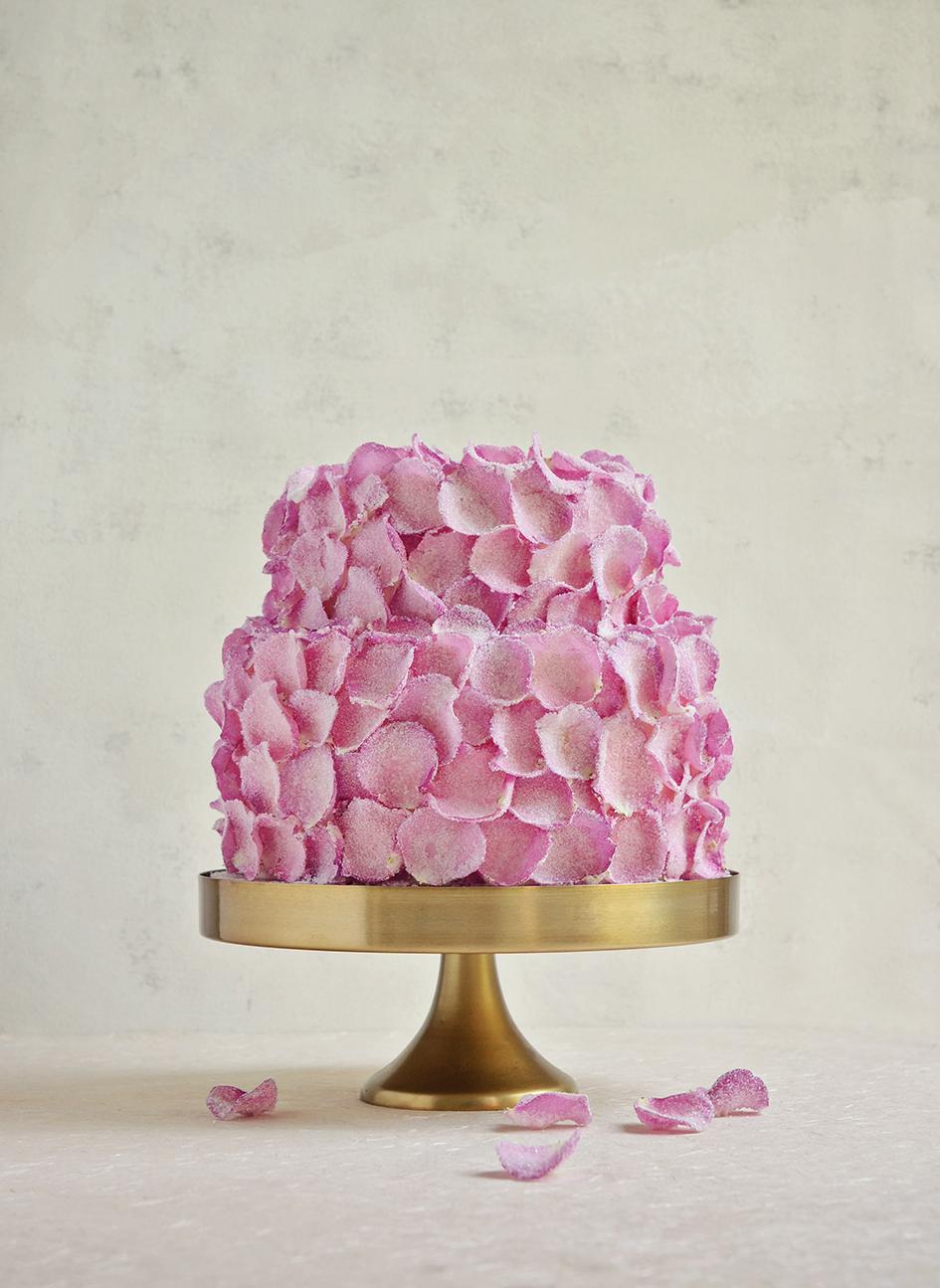 Sugared rose petal cake